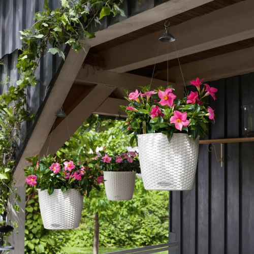 jardinière balcon terrasse avec auvent