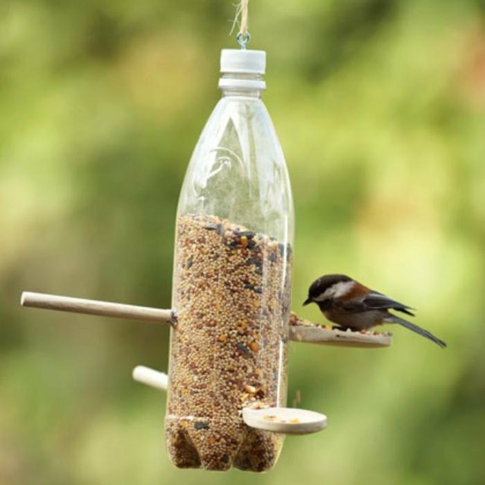 mangeoire oiseaux de bouteille