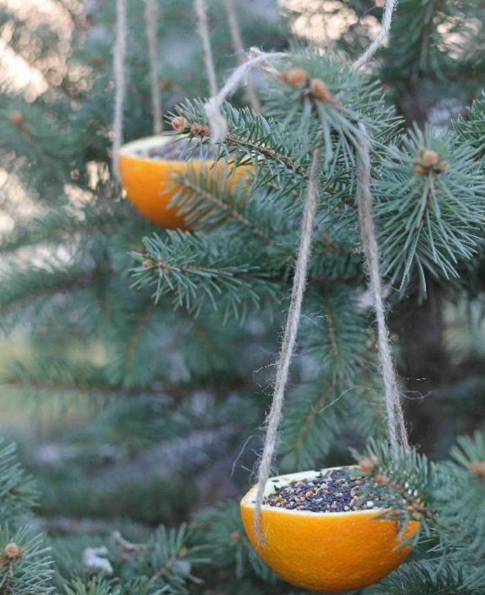 mangeoire oiseaux idée avec des oranges