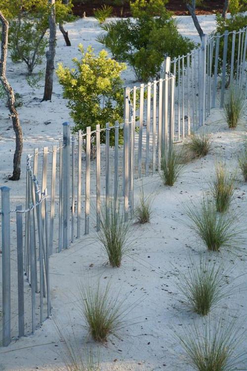 palissade jardin à fonction délimitative