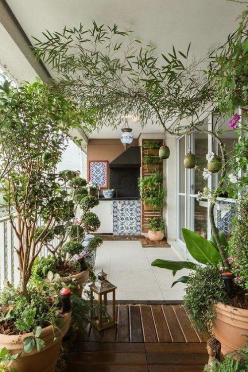 plante en pot terrasse coin cuisine sur la terrasse