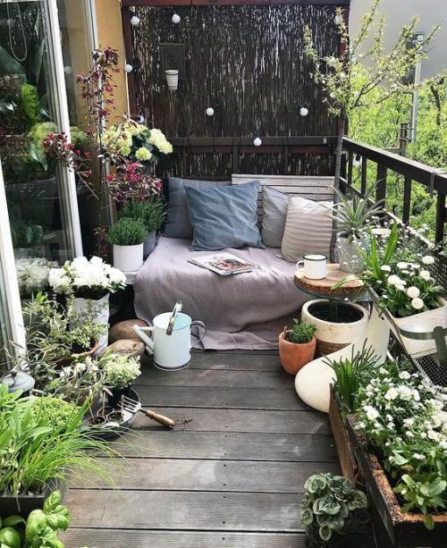 plante en pot terrasse coin-détente et sol en bois