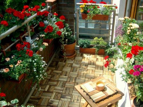 plante en pot terrasse espace étroit
