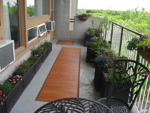 plante en pot terrasse espace large et long