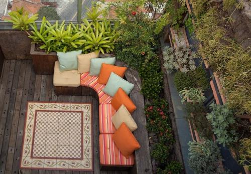 plante en pot terrasse grand espace sur le toit