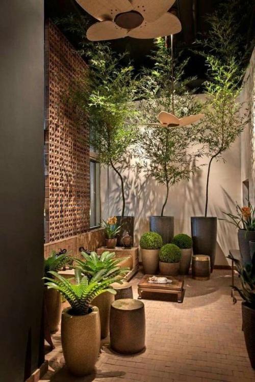 plante en pot terrasse grands murs et sol en briques