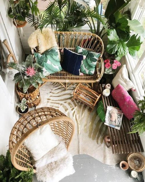 plante en pot terrasse petit espace vitré