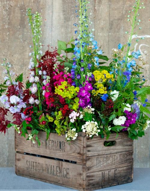 plante extérieure en pot coffre en bois comme jardinière