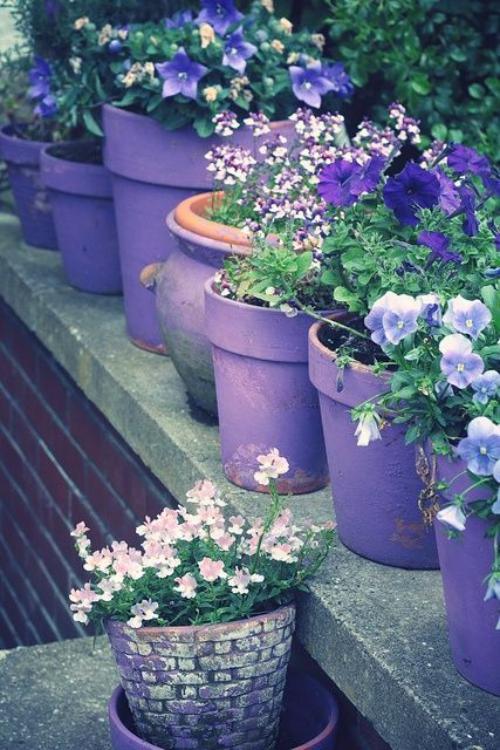 plante extérieure en pot rebords stable en béton