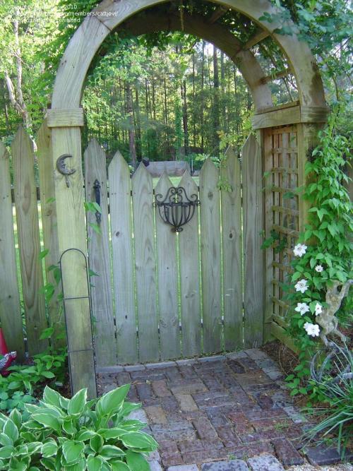 portillon jardin palissade en bois
