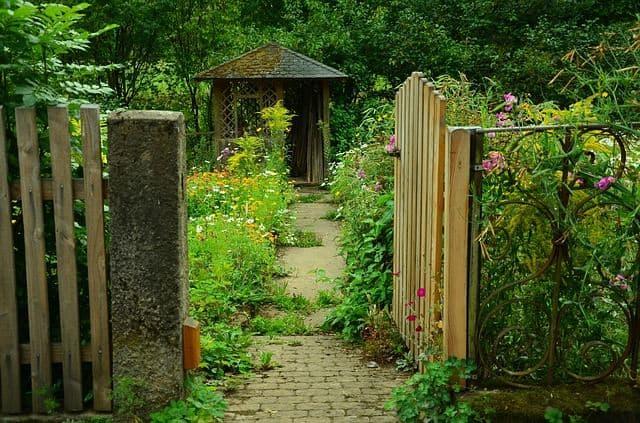 portillon jardin sentier envahi par la végétation