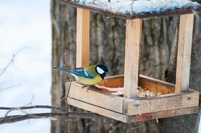 projet mangeoire oiseaux diy
