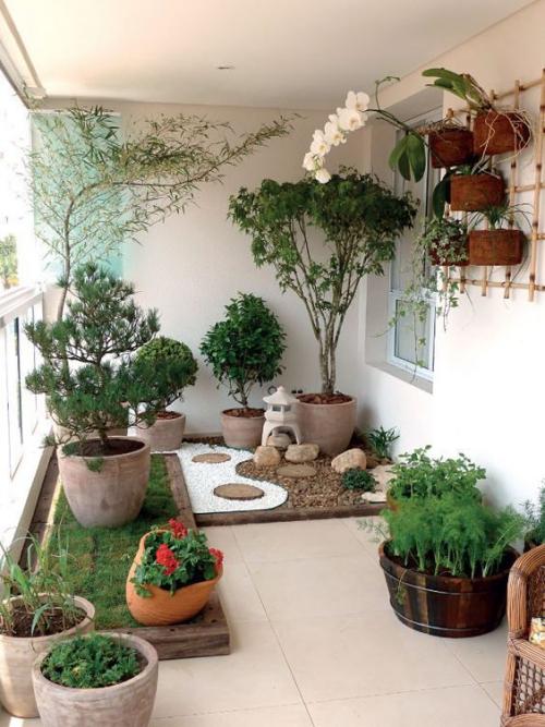 revêtement sol balcon un mini-jardin avec beaucoup de plantes