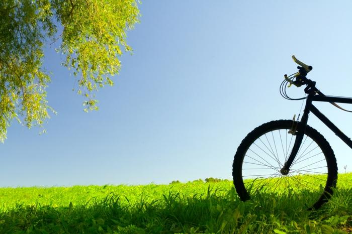 vélo quel sport pratiquer pendant l'été