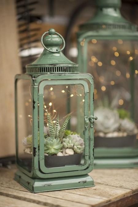 terrarium de vieilles lanternes