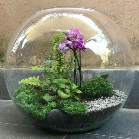 terrarium une sphère en verre