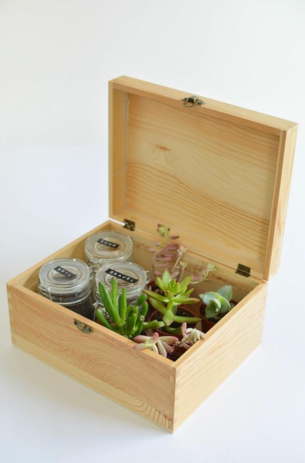 cadeau de noël maman à faire soi-même boîte plantes succulentes