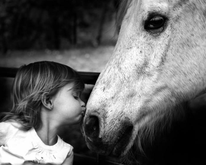 cheval et enfant photographie noir et blanc