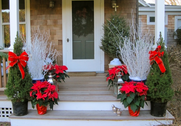 décoration de noël extérieur branches blanches lanternes de verre plantes de poinsettia rouge