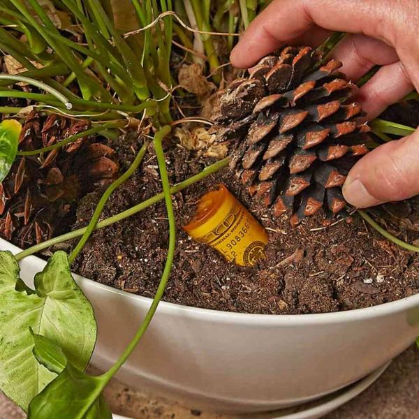 idée de cachette secrète maison pot de plante