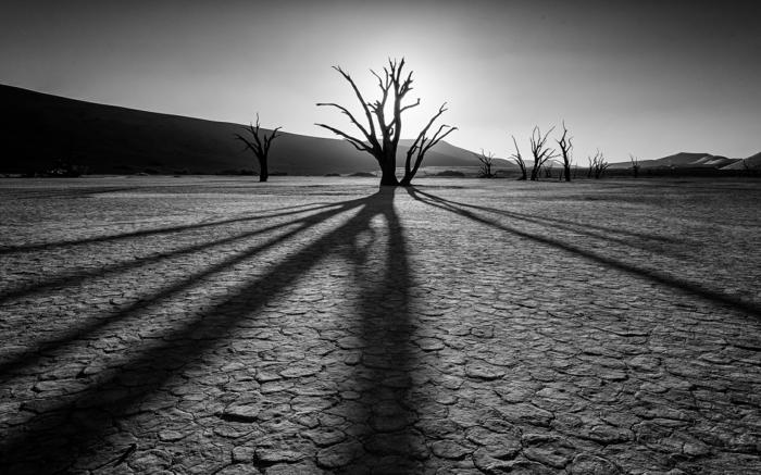photographie noir et blanc désert
