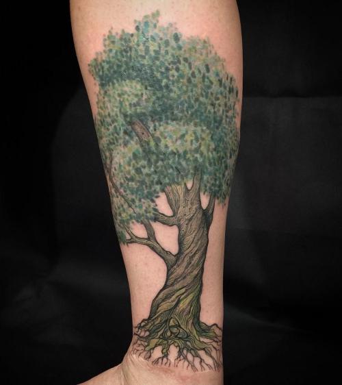 tatouage arbre de vie arbre vert