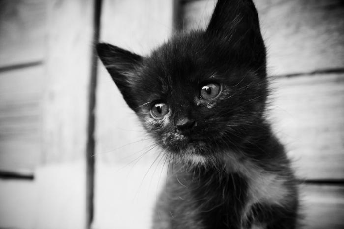 tristesse photographie noir et blanc