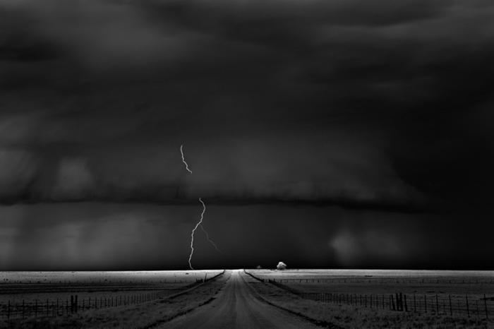 unique photo de la nature photographie noir et blanc