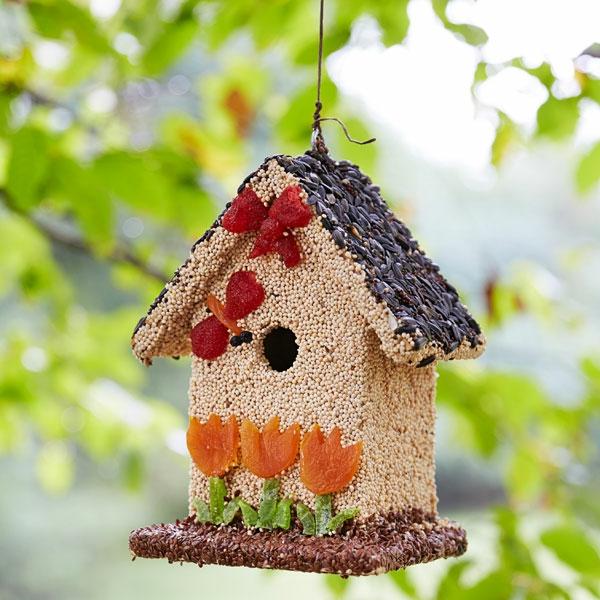 diy mangeoire oiseaux comestible de graines