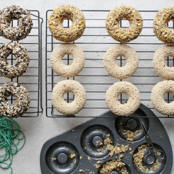 diy mangeoire oiseaux comestible en moule à doughnuts