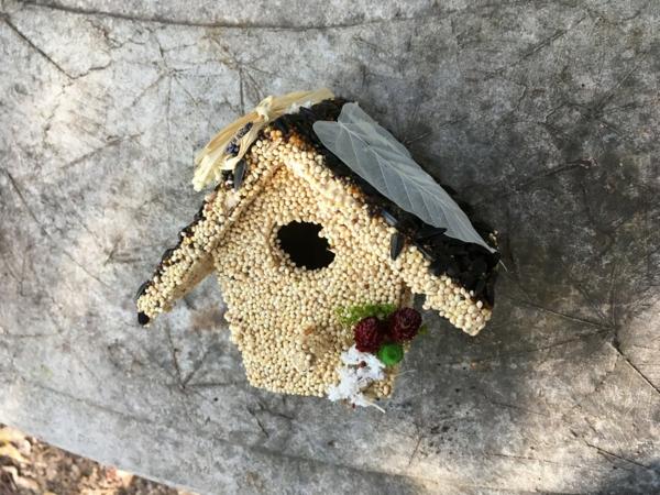 diy mangeoire oiseaux comestible hiver