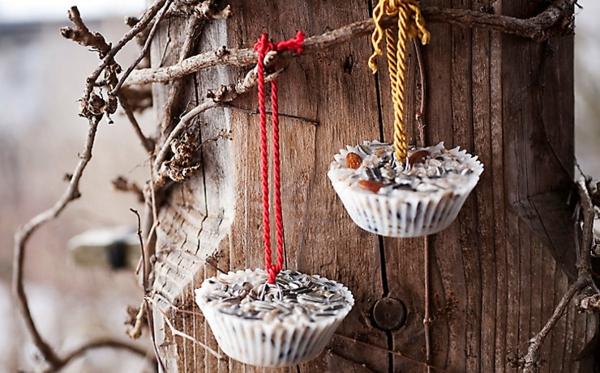 diy mangeoire oiseaux huile de noix de coco graines fruits