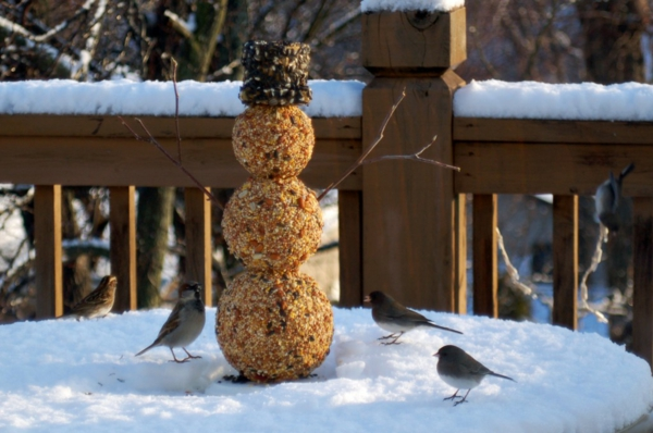 idée de mangeoire oiseaux à faire soi-même