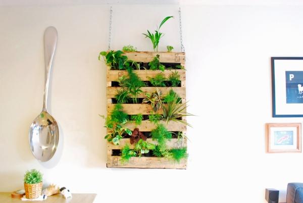 mur végétal palette accrochage à l'aide de chaînes