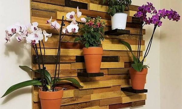 mur végétal palette démantelage