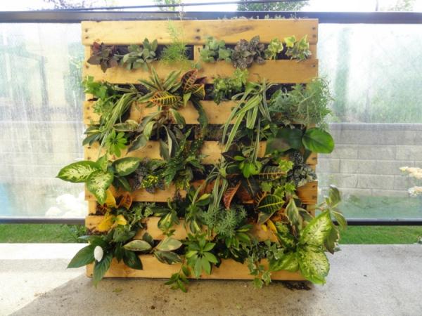 mur végétal palette jolie verdure
