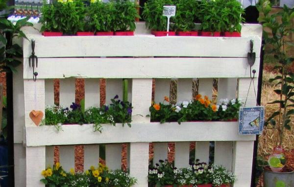 mur végétal palette trois niveaux