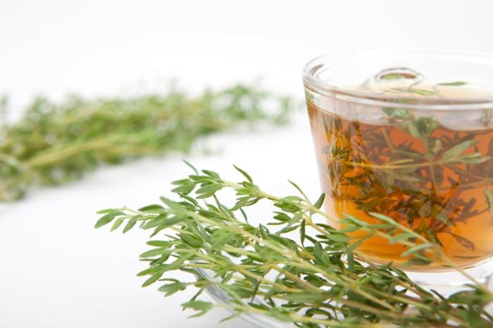 tisane de thym pour combattre le rhume