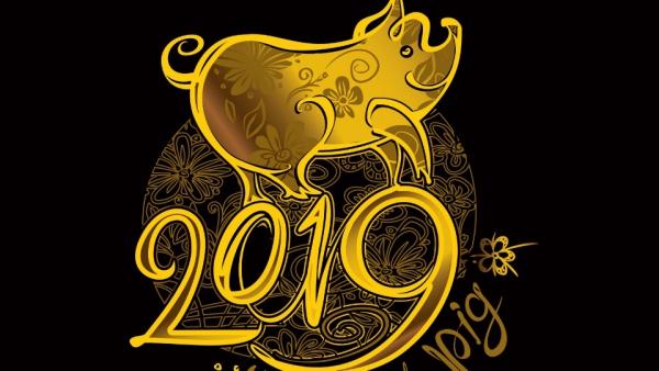 année du cochon finesse et exquisité