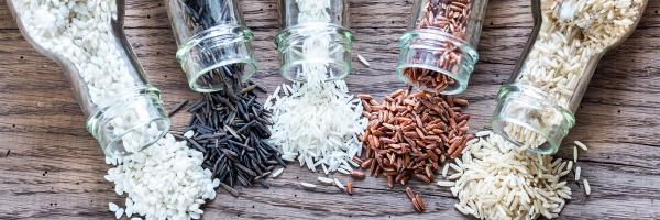 conservation riz cuit quelques sortes de riz
