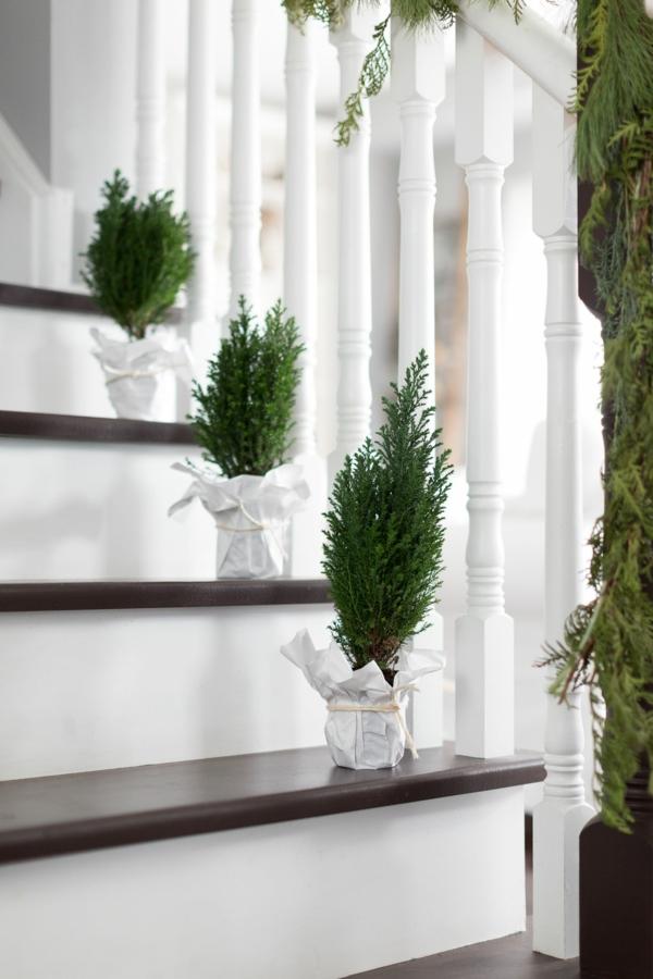 décoration escalier noël plantes en pots