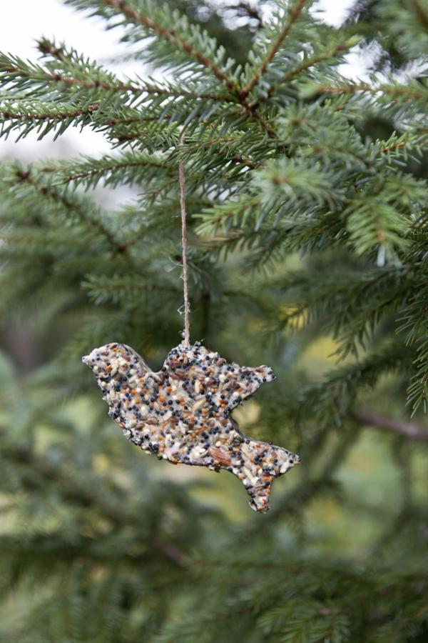 décorer son sapin de noël ornement graines d'oiseaux