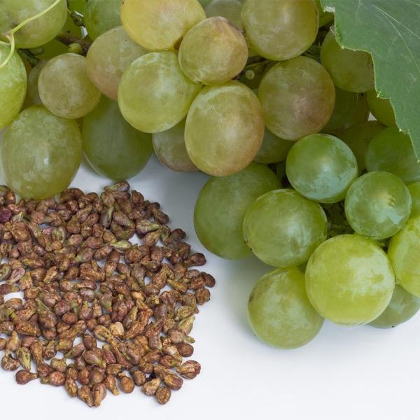 huile de pépins de raisin un procès difficile