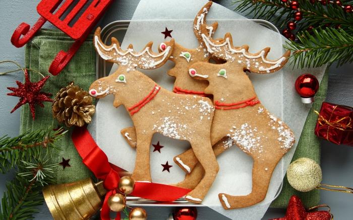 idée glaçage biscuit noël rennes