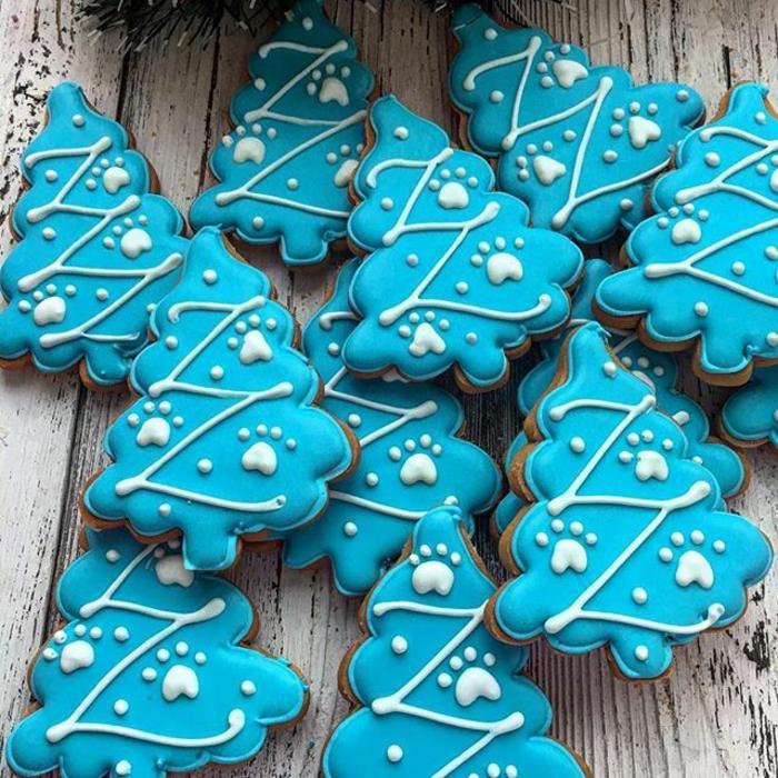 idée glaçage biscuit noël sapins bleus