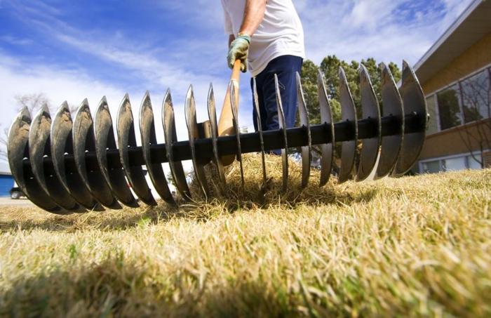 jardinage pour les nuls préparation du jardin pour le printemps nettoyage et aération