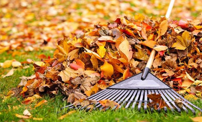 jardinage pour les nuls préparation du jardin pour le printemps nettoyage