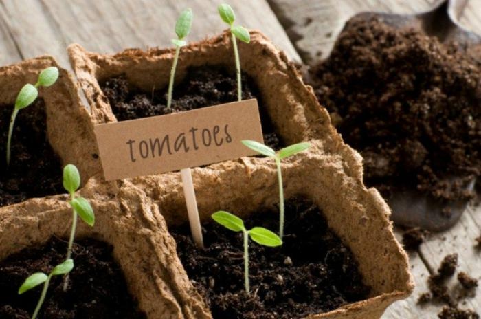 jardinage pour les nuls préparation du jardin pour le printemps semis