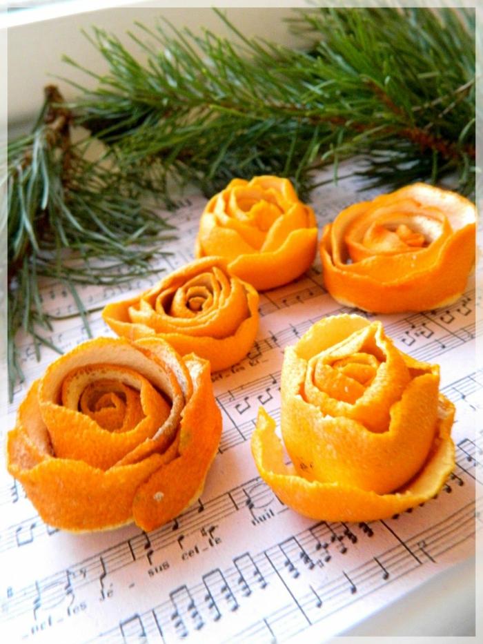roses à partir de épluchures