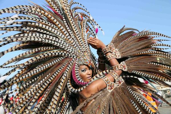 carnaval de mardi gras plumes de faisan